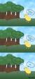 Comics - Patrick Adams - Donald Duck-